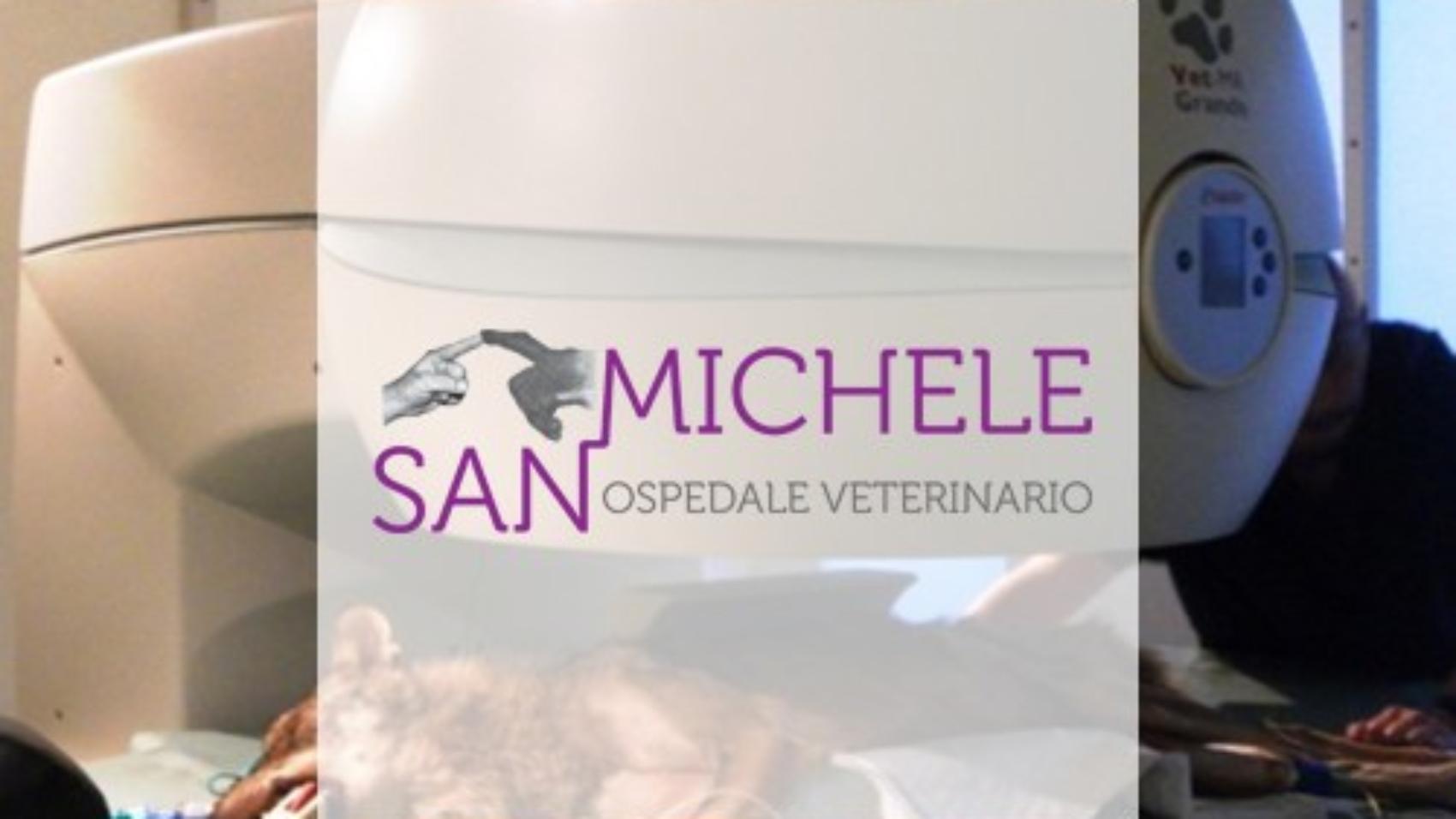 Ospedale San Michele Dott. Zeira