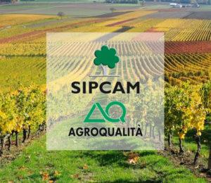 Sipcam